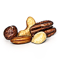Regular Mixed Nuts