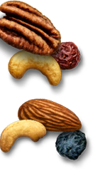 PlayGap Nuts Image