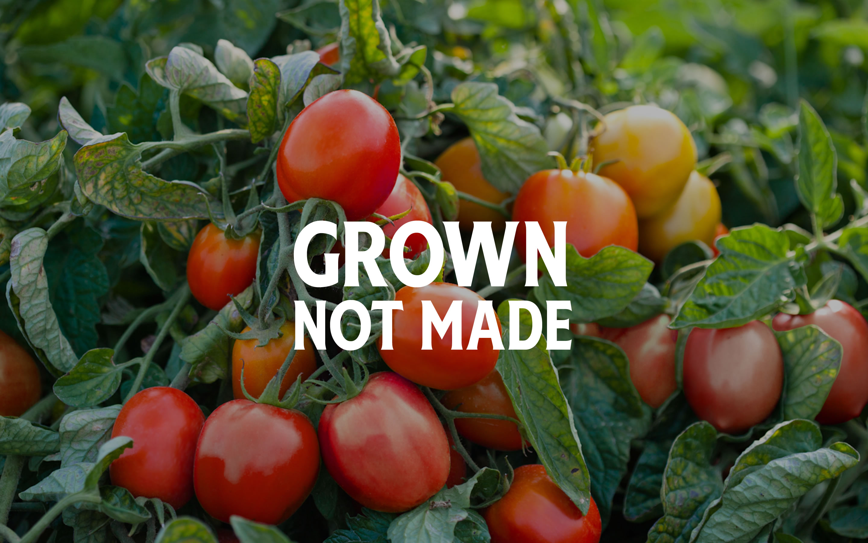 Grown not made banner